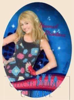 Nažehlovací záplata - Hannah Montana 2