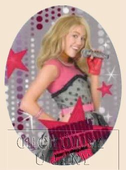 Nažehlovací záplata - Hannah Montana 3